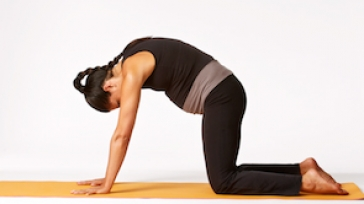 Pregnancy in the Second Trimester - How Yoga Can Help
