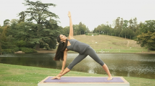 ELEMENTS OF YOGA: EARTH FOUNDATION